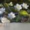 Tranh dán tường 3d hoa sen h285