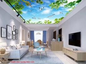 Giấy dán trần nhà phòng khách c202