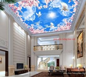 Giấy dán trần nhà phòng khách d161