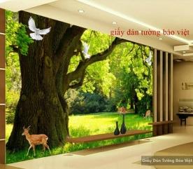Giấy dán tường đẹp K14239157