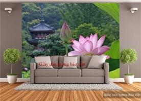 Giấy dán tường hoa sen H105