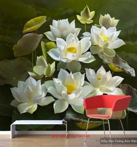 Giấy dán tường hoa sen H169