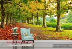 Giấy dán tường mùa thu Tr150