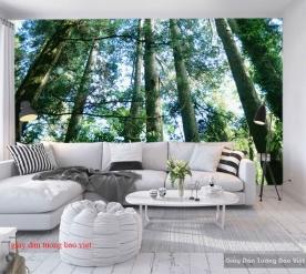 Wallpaper landscape Tr283