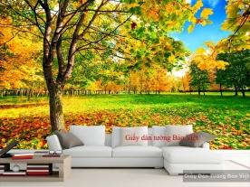 Giấy dán tường phong cảnh đẹp Tr160