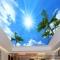 Giấy dán tường 3D dán trần nhà C061