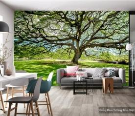 Giấy dán tường 3d phong cảnh tr241