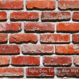 Giấy Dán Tường Giả Đá 53101-3