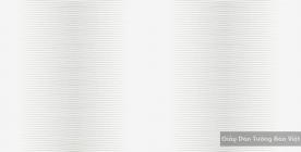 Giấy Dán Tường Hàn Quốc 2569-1