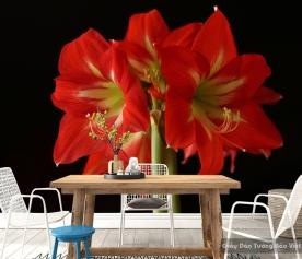 Tranh giấy dán tường hoa 3D H003