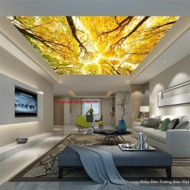 Tranh tranh trần nhà C083