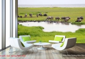Tranh dán tường phong cảnh thiên nhiên Việt nam Fi099