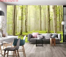 Wallpaper of natural landscapes tr292