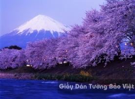 Tranh Giấy Dán Tường 3D Phong Cảnh Thiên Nhiên Sông Núi LK 1502-1