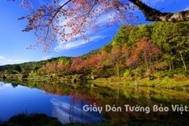 Tranh Giấy Dán Tường 3D Phong Cảnh Thiên Nhiên Sông Núi LK 1502-2