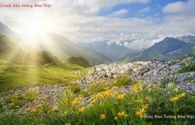 Tranh dán tường phong cảnh sông núi M049