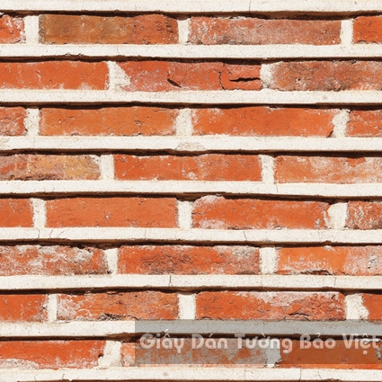 Giấy Dán Tường Giả Đá 53102-1