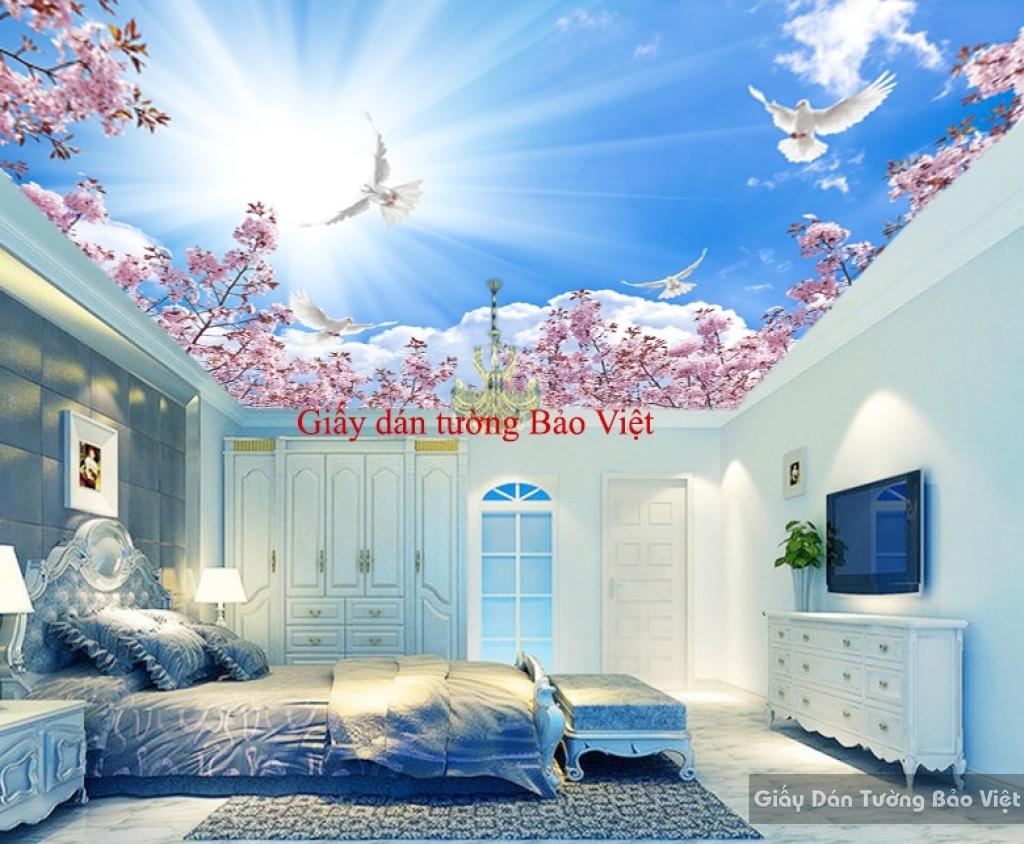 Giấy dán trần nhà phòng ngủ C074