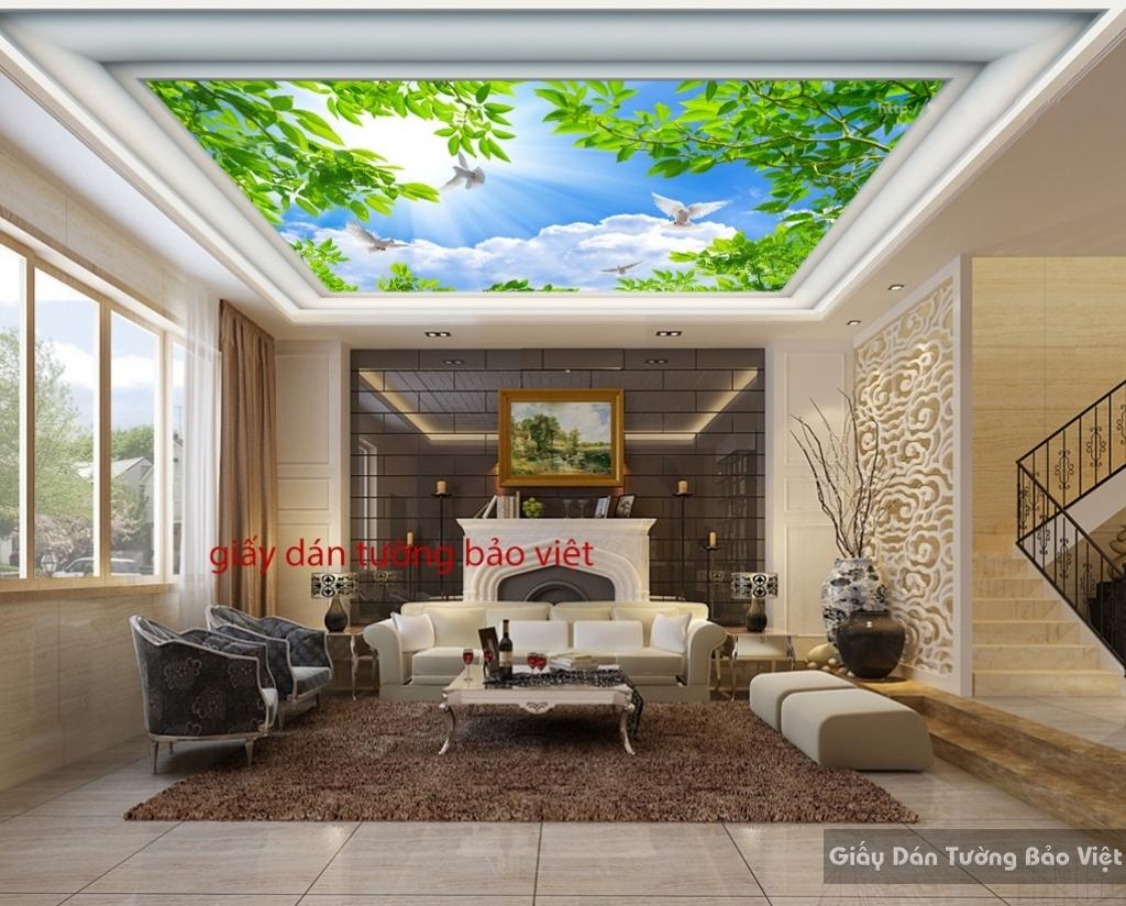 Giấy dán tường 3D dán trần nhà C030