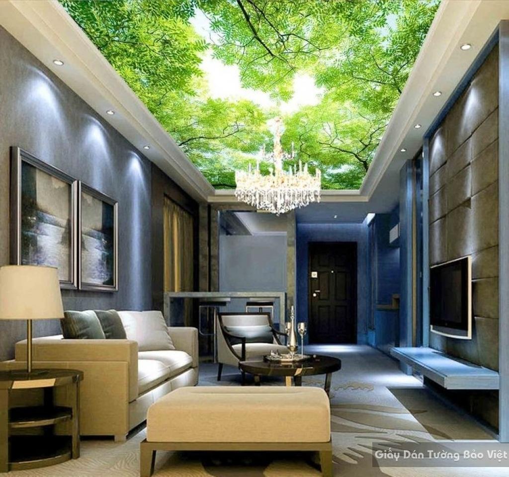 Giấy dán tường 3D trần nhà C020