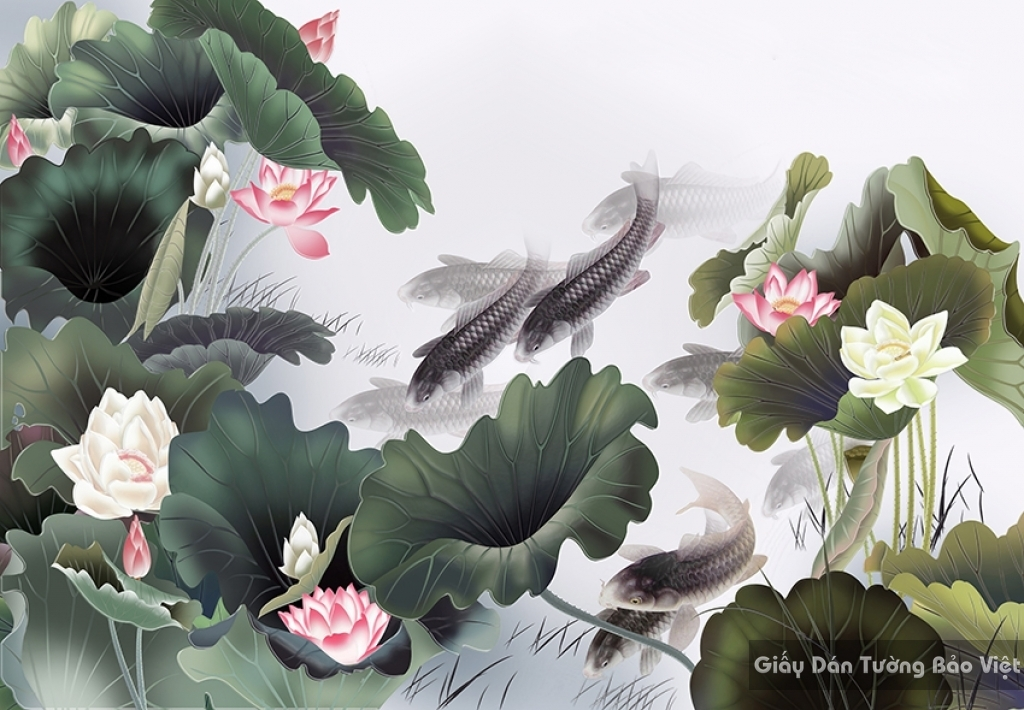 Giấy dán tường 3d hoa sen cá chép 001