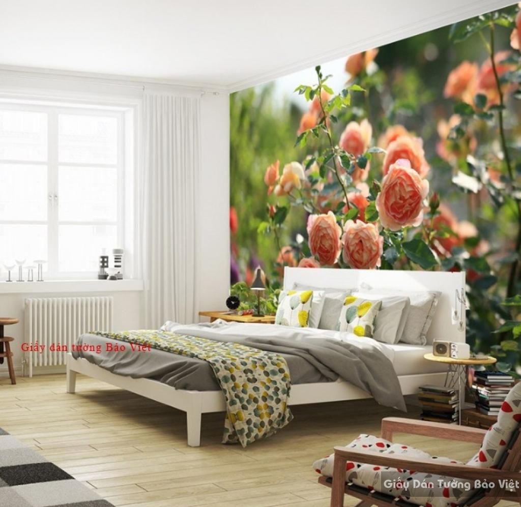 Giấy dán tường cho phòng ngủ H143