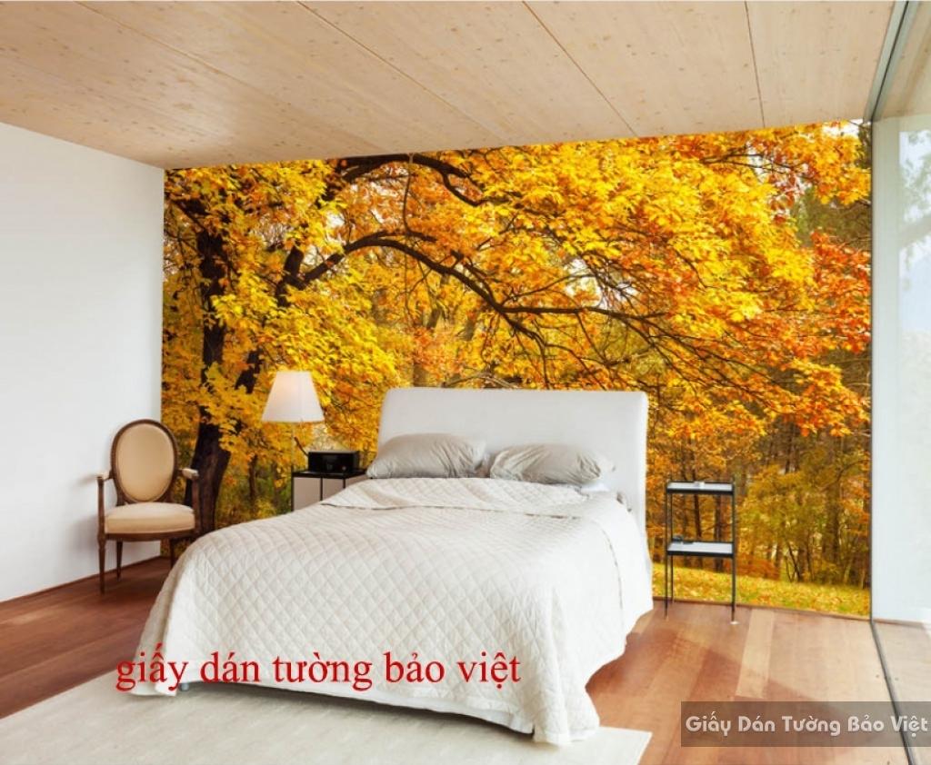 Giấy dán tường cho phòng ngủ màu vàng Tr133