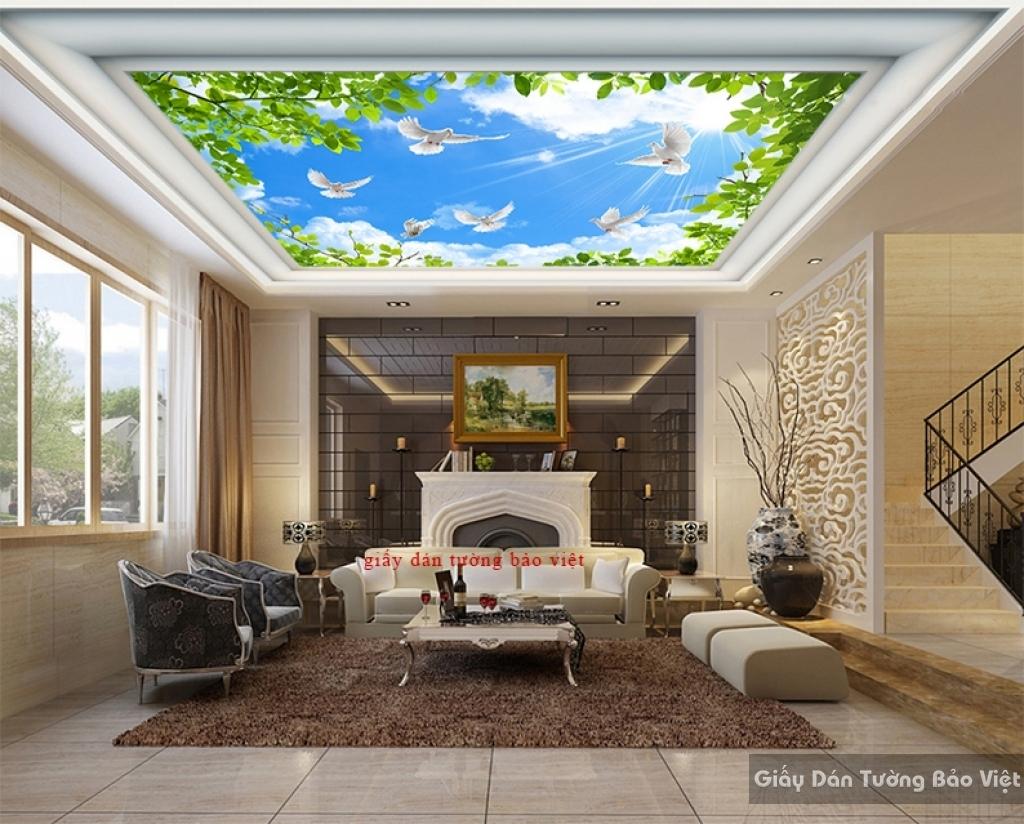 Giấy dán tường dán trần nhà C096
