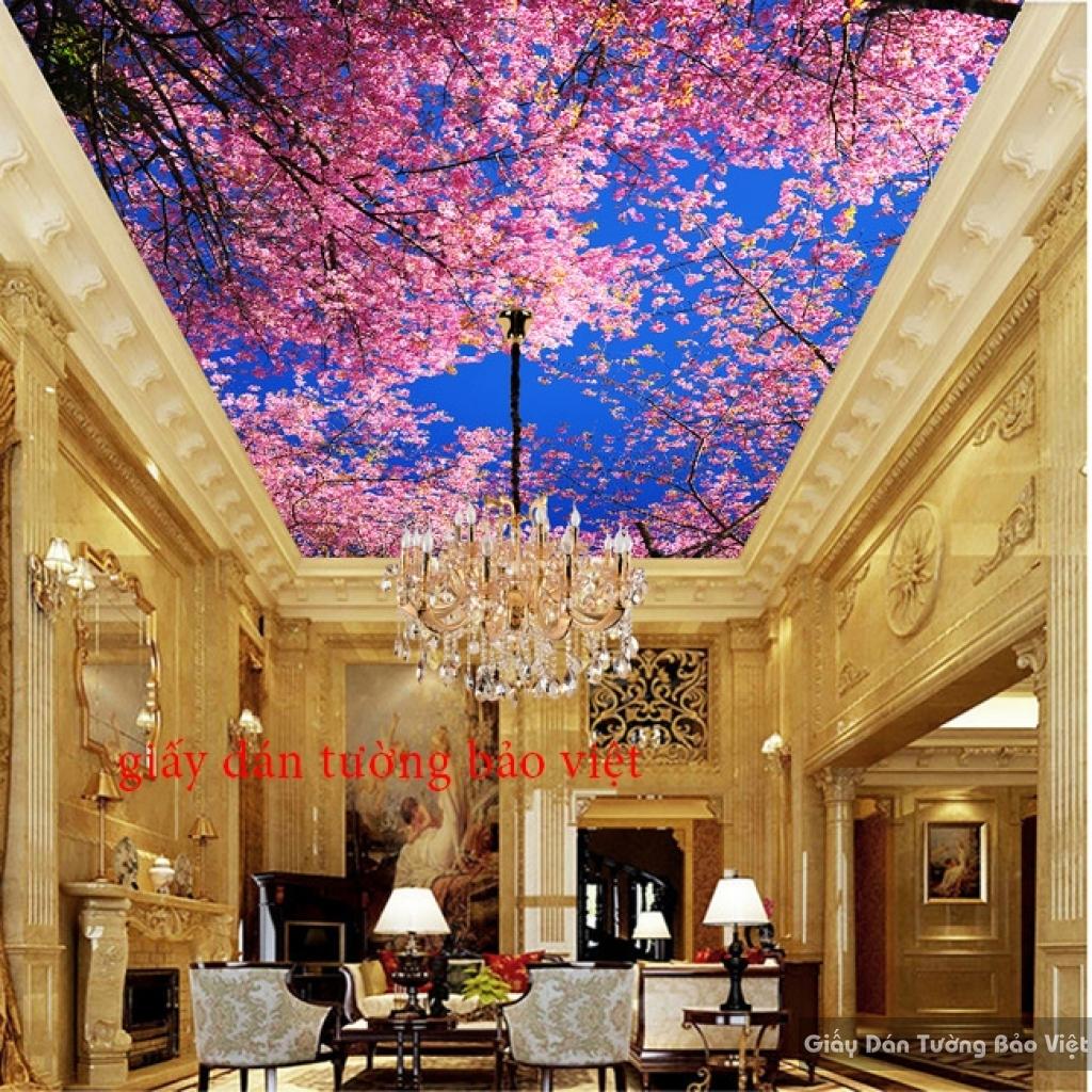 Giấy dán tường dán trần nhà phòng khách C027