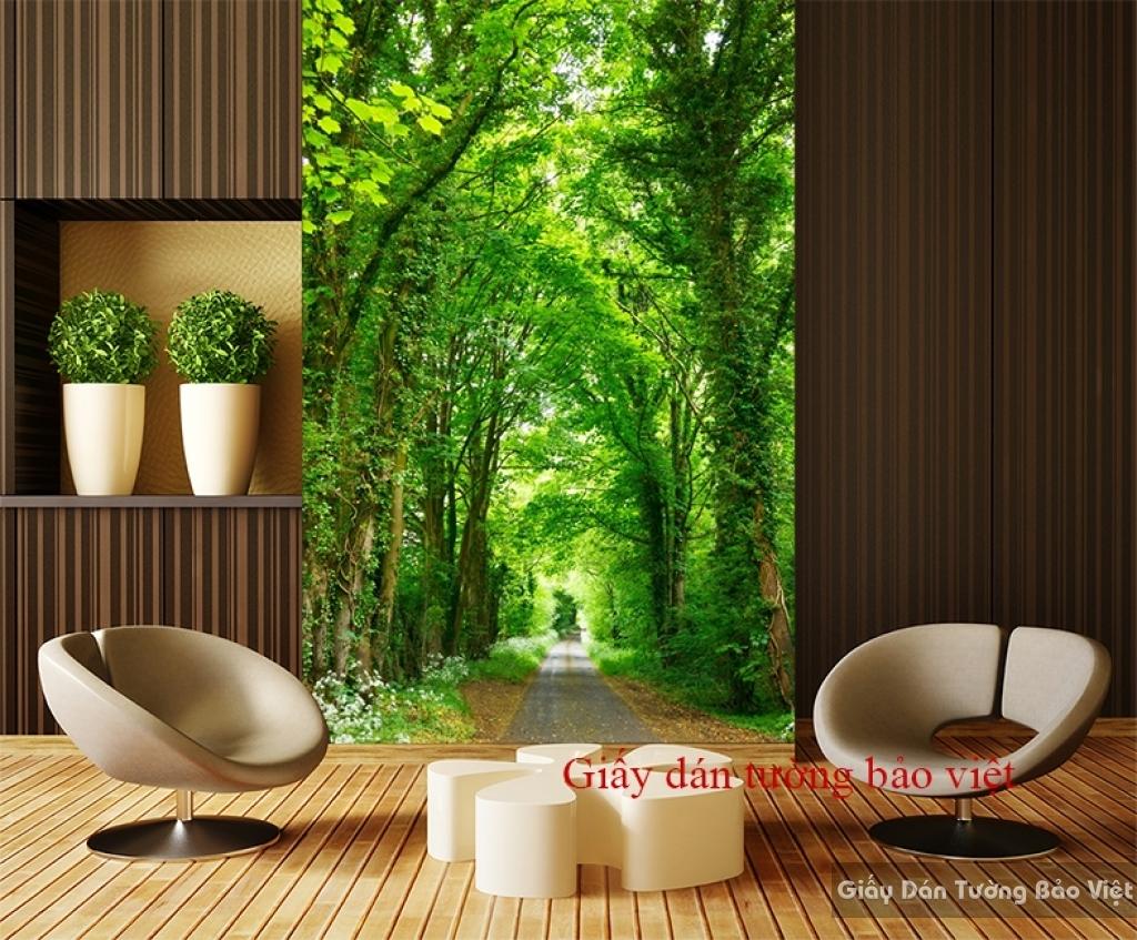 Giấy dán tường hàng cây đẹp K014