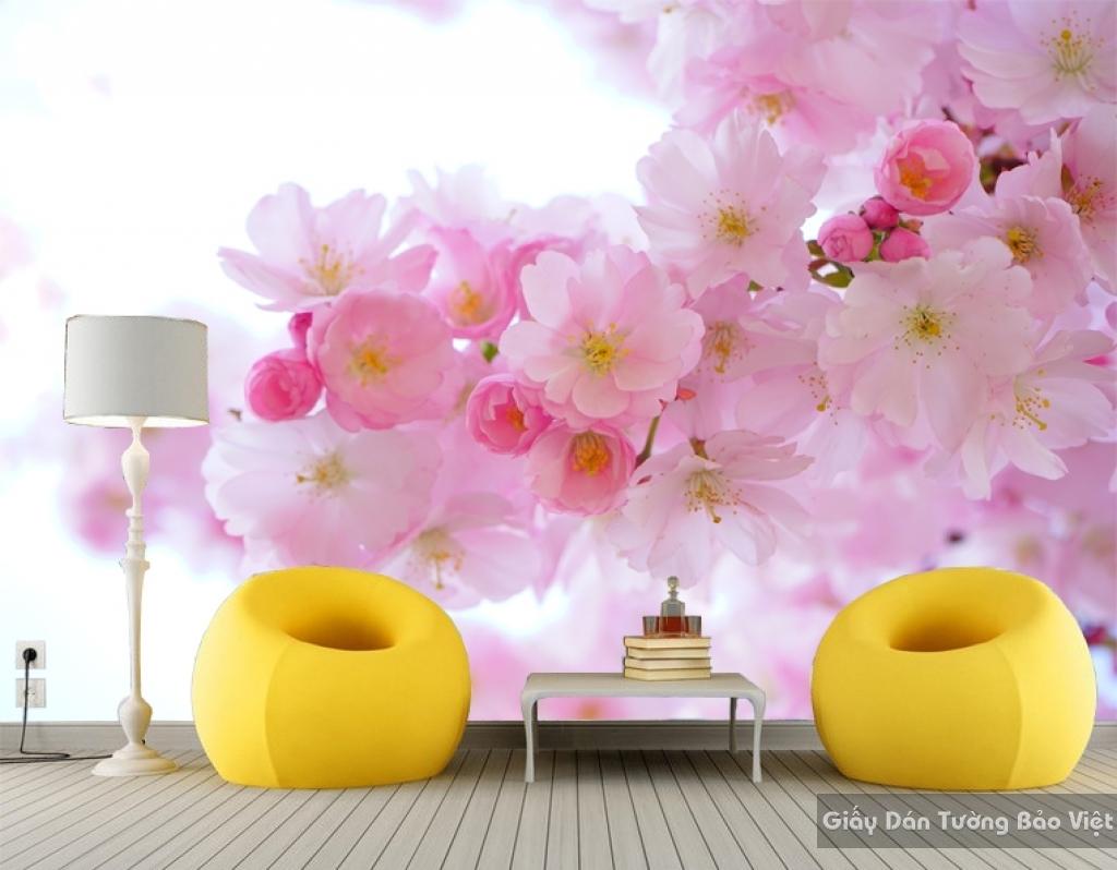 Giấy dán tường hoa 3D H016
