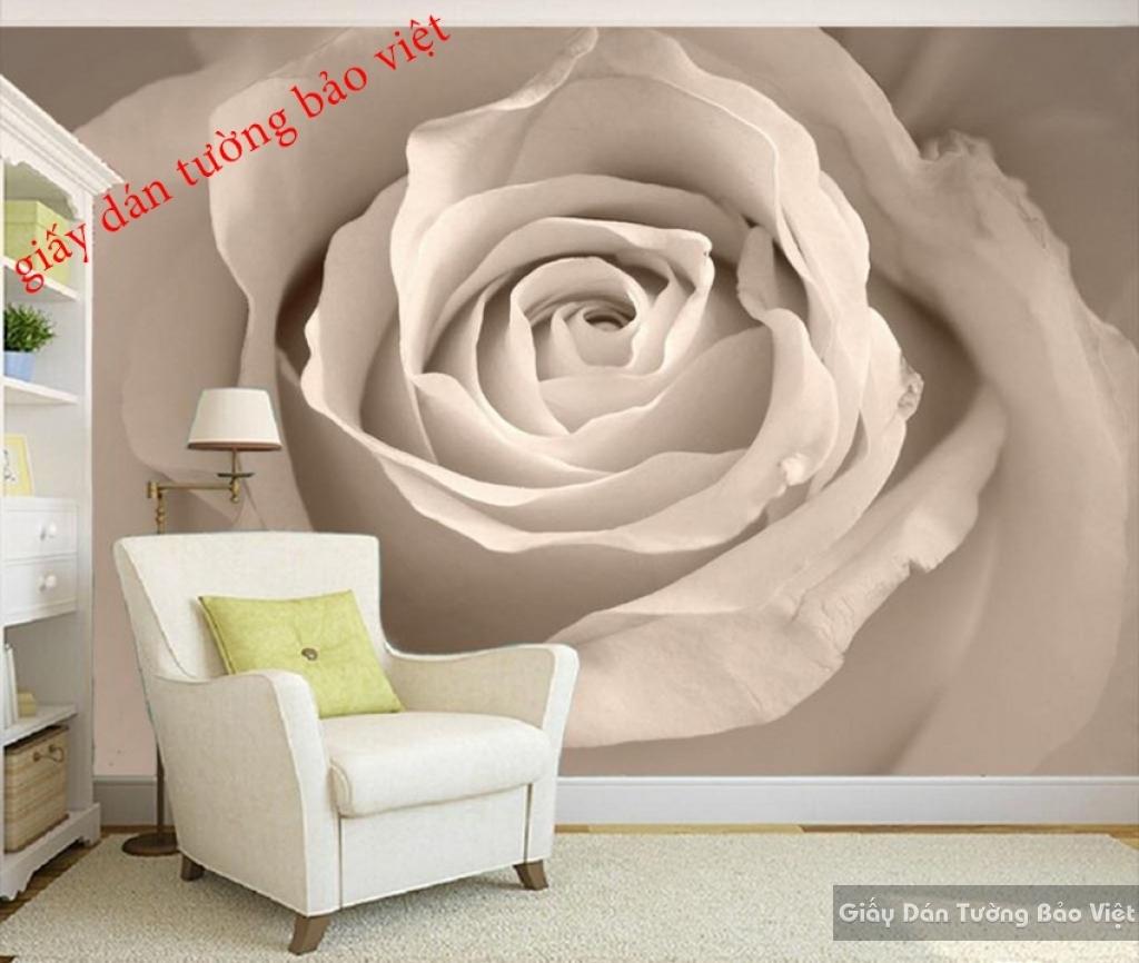Giấy dán tường hoa hồng 3D H080