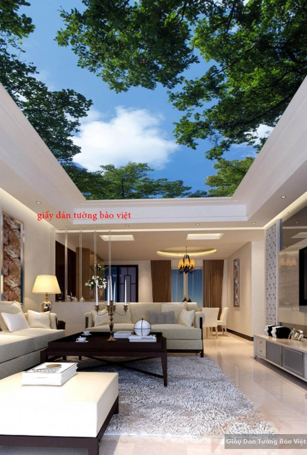 Giấy dán tường phòng khách dán trần nhà 3D C026