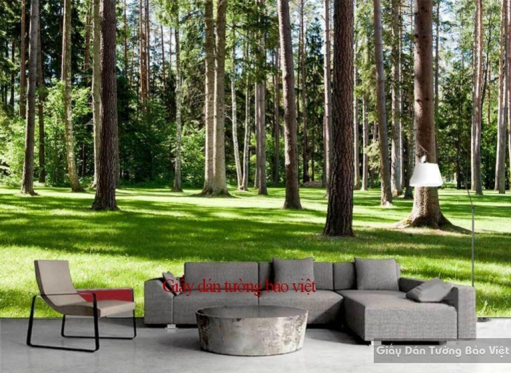 Giấy dán tường phòng khách rừng cây Tr139