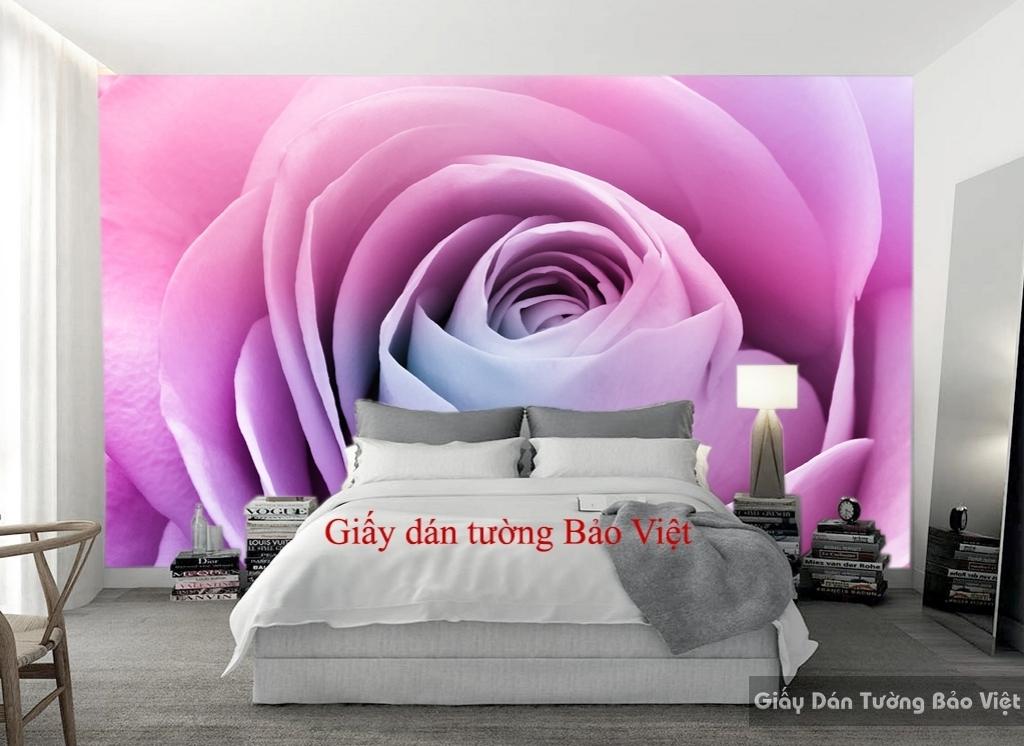 Giấy dán tường phòng ngủ đẹp H113