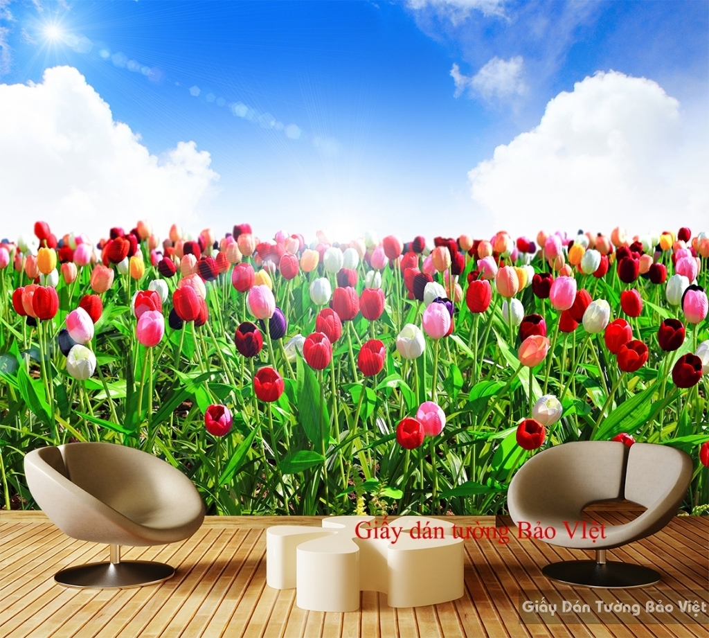 Giấy dán tường vườn hoa H119