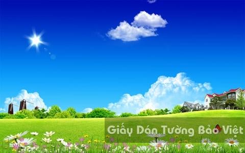 Tranh Giấy Dán Tường 3D Phong Cảnh Thiên Nhiên Cánh Đồng Hoa CA007-2