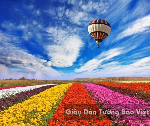 Tranh Giấy Dán Tường 3D Phong Cảnh Thiên Nhiên Cánh Đồng Hoa FLLS 1501-14