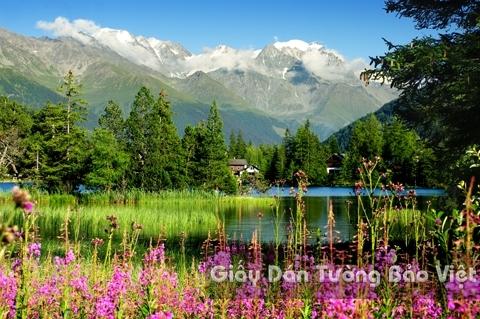Tranh Giấy Dán Tường 3D Phong Cảnh Thiên Nhiên Sông Núi LK 1501-28