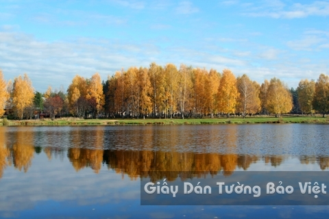 Tranh Giấy Dán Tường 3D Phong Cảnh Thiên Nhiên Sông Núi LK 1501-31