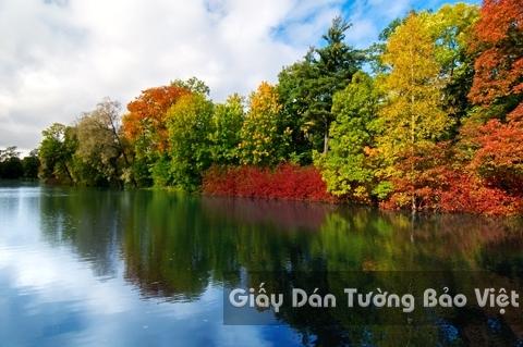 Tranh Giấy Dán Tường 3D Phong Cảnh Thiên Nhiên Sông Núi LK 1501-36