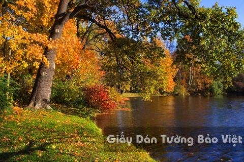 Tranh Giấy Dán Tường 3D Phong Cảnh Thiên Nhiên Sông Núi LK 1502-5