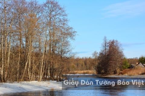 Tranh Giấy Dán Tường 3D Phong Cảnh Thiên Nhiên Sông Núi LK 1502-6