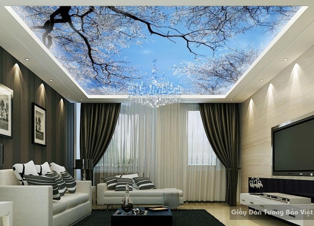 Tranh dán trần nhà C028