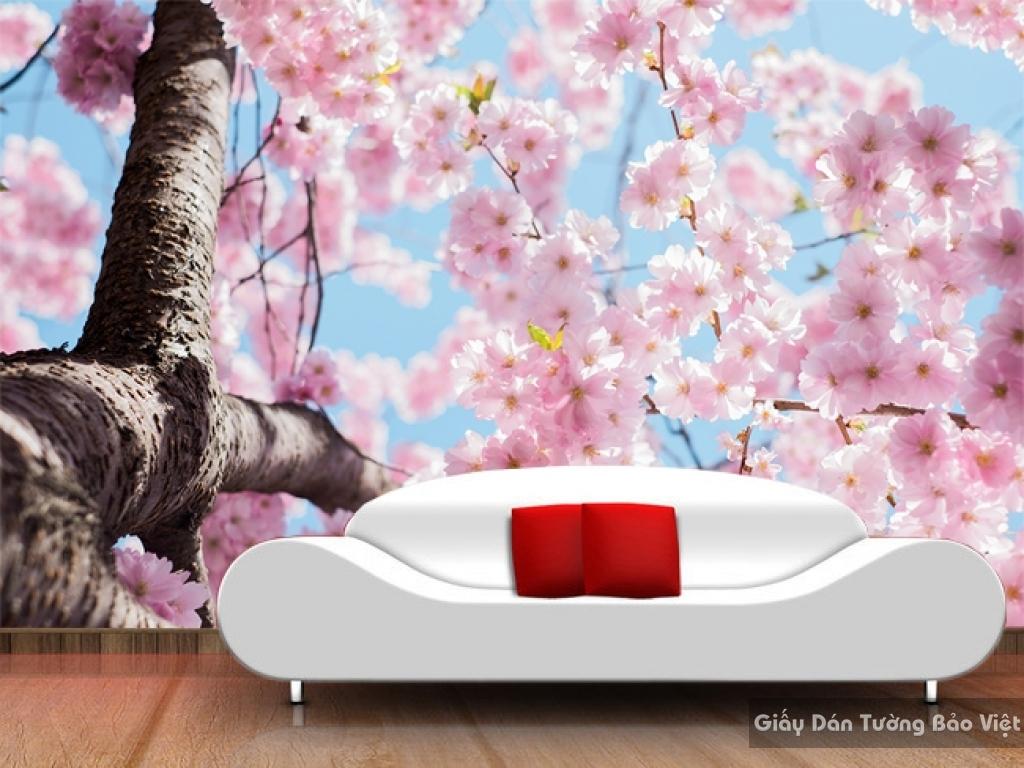 Tranh giấy dán tường hoa 3D H017