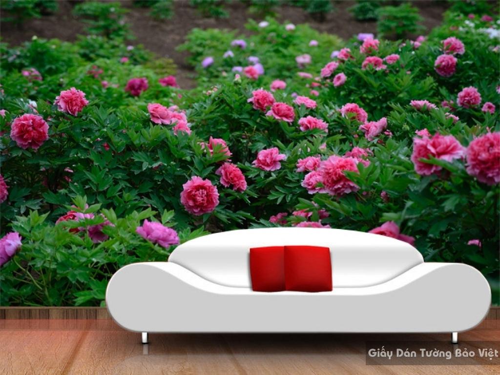 Tranh giấy dán tường hoa 3D H035