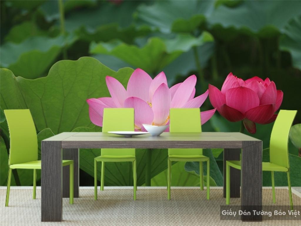 Tranh giấy dán tường hoa 3D H041